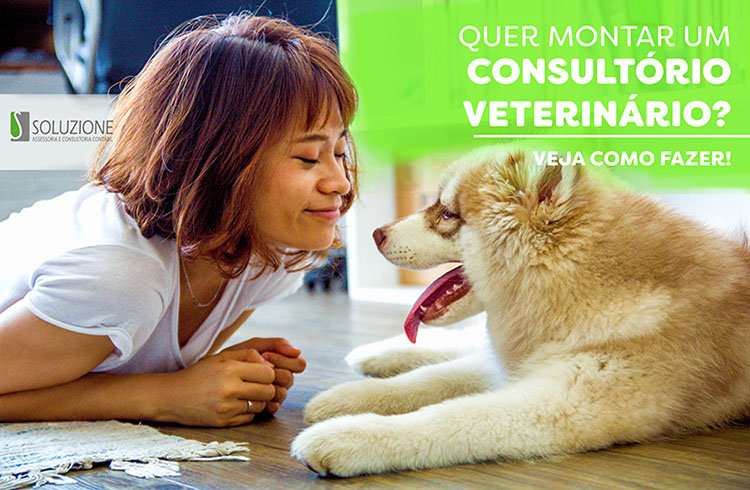 Montar consultório veterinário