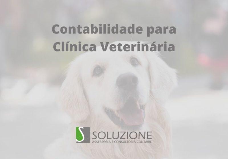 contabilidade para clínicas veterinárias em São Paulo
