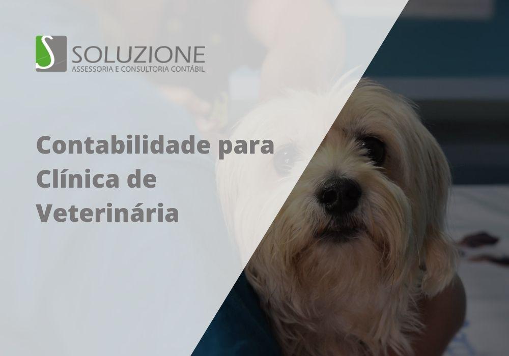 contabilidade para clínica veterinária